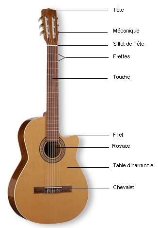 anatomie de la guitare acoustique cours de guitare. Black Bedroom Furniture Sets. Home Design Ideas
