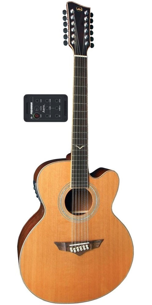 VGS GUITARE ELECTRO ACOUSTIQUE FOLK VGS